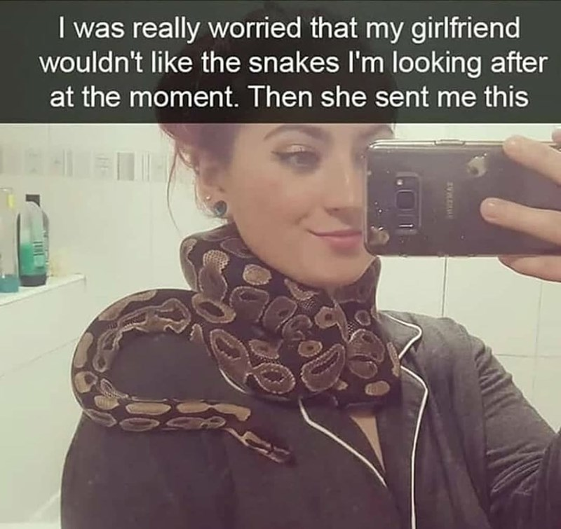 Hairstyle - I was really worried that my girlfriend wouldn't like the snakes l'm looking after at the moment. Then she sent me this