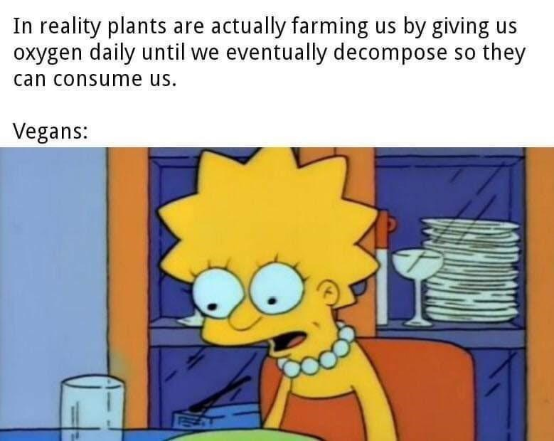 Facial expression - In reality plants are actually farming us by giving us oxygen daily until we eventually decompose so they can consume us. Vegans: