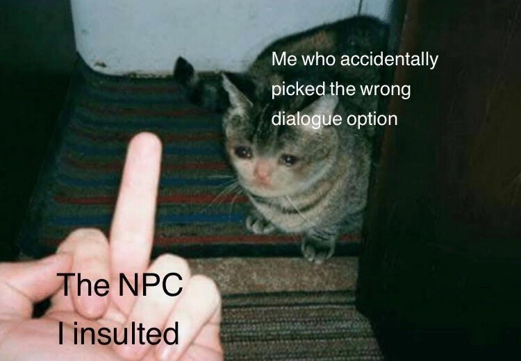 Cat - Me who accidentally picked the wrong dialogue option The NPC Tinsulted