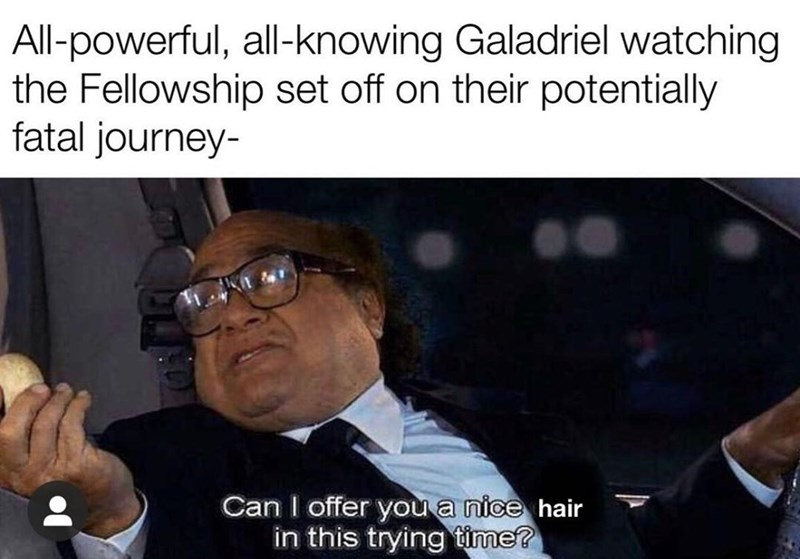 Forehead - All-powerful, all-knowing Galadriel watching the Fellowship set off on their potentially fatal journey- Can I offer you a nice hair in this trying time?