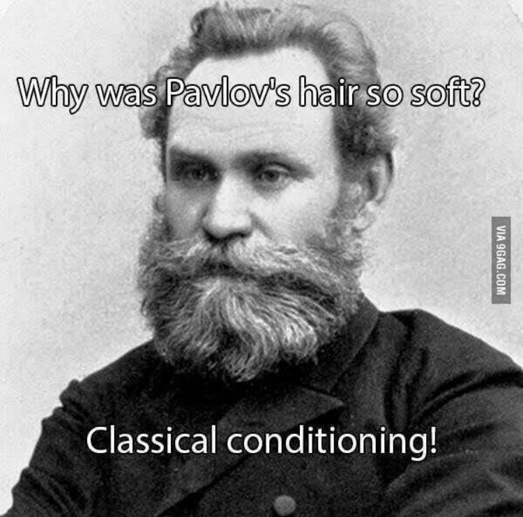 Clothing - Why was Pavlov's hair so soft? Classical conditioning! VIA 9GAG.COM