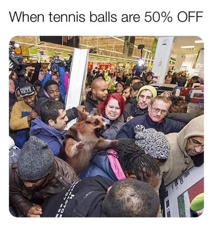 Photograph - When tennis balls are 50% OFF NETS 10