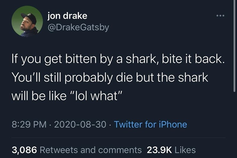 """Organism - jon drake @DrakeGatsby ... If you get bitten by a shark, bite it back. You'll still probably die but the shark will be like """"lol what"""" 8:29 PM · 2020-08-30 · Twitter for iPhone 3,086 Retweets and comments 23.9K Likes"""