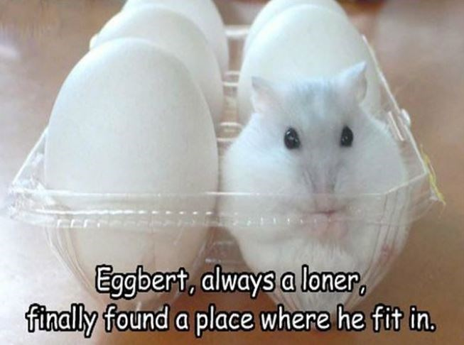Rabbits and Hares - Eggbert, always a loner. finally found a place where he fit in.