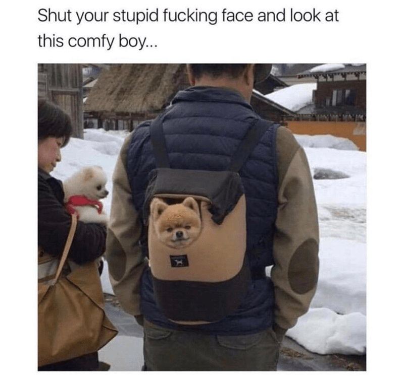 Outerwear - Shut your stupid fucking face and look at this comfy boy...