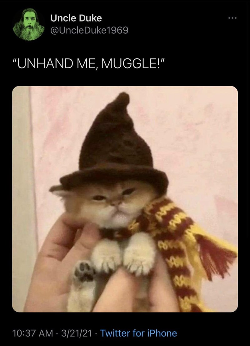 "Cat - Uncle Duke @UncleDuke1969 ""UNHAND ME, MUGGLE!"" 10:37 AM · 3/21/21 · Twitter for iPhone"
