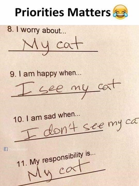 Handwriting - Priorities Matters 8. I worry about.. My cat 9. I am happy when... I see my cat cat 10. I am sad when... I don't sce my ca fSarcasmlol 11. My responsibility is... My cat