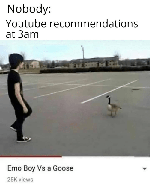 Funny meme about YouTube recommendations at 3am, emo guy vs goose, dank memes, lol