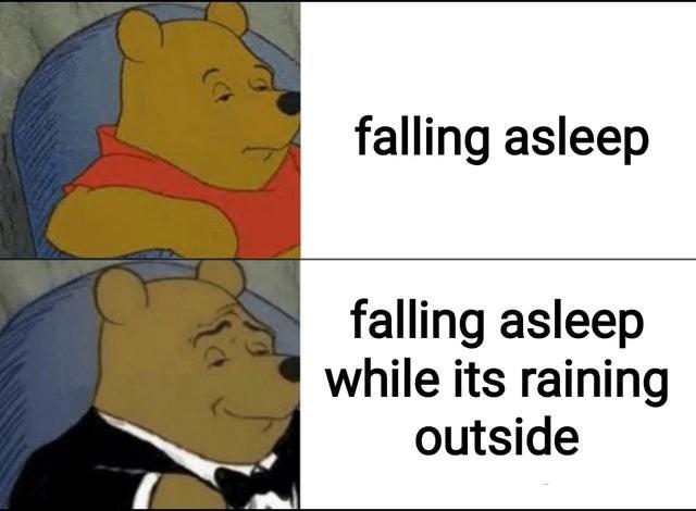Funny memes, winnie the pooh, dank memes, relatable memes | falling asleep falling asleep while its raining outside