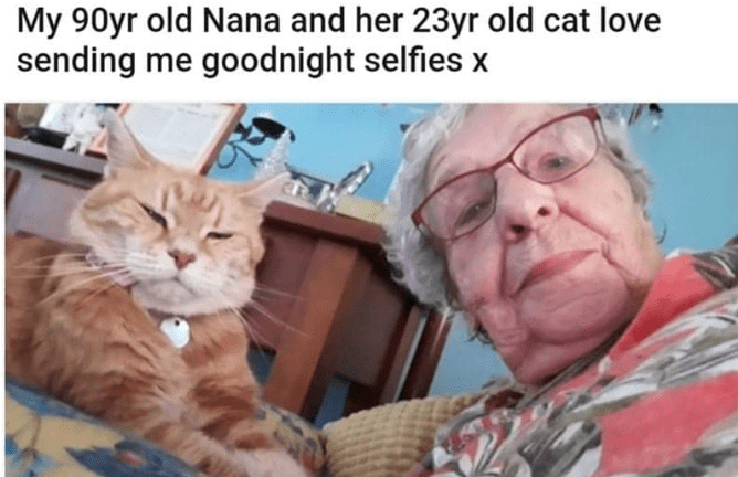 Glasses - My 90yr old Nana and her 23yr old cat love sending me goodnight selfies x