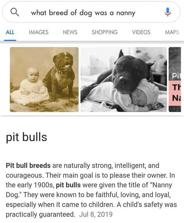 """Product - Q what breed of dog was a nanny ALL IMAGES NEWS SHOPPING VIDEOS MAPS Pit Th Na pit bulls Pit bull breeds are naturally strong, intelligent, and courageous. Their main goal is to please their owner. In the early 1900s, pit bulls were given the title of """"Nanny Dog."""" They were known to be faithful, loving, and loyal, especially when it came to children. A child's safety was practically guaranteed. Jul 8, 2019"""