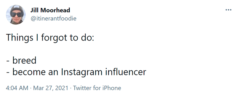 Font - Jill Moorhead ... @itinerantfoodie Things I forgot to do: - breed - become an Instagram influencer 4:04 AM · Mar 27, 2021 · Twitter for iPhone