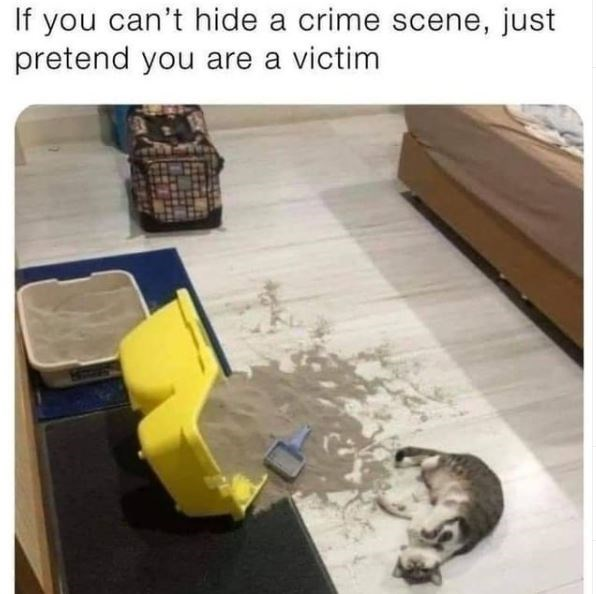 Table - If you can't hide a crime scene, just pretend you are a victim