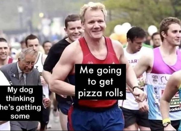 Clothing - AR Me going to get pizza rolls My dog thinking he's getting ATHT TAI odida some
