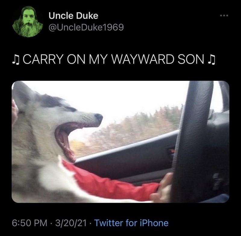 Vehicle - Uncle Duke @UncleDuke1969 J CARRY ON MY WAYWARD SON . 6:50 PM · 3/20/21 · Twitter for iPhone