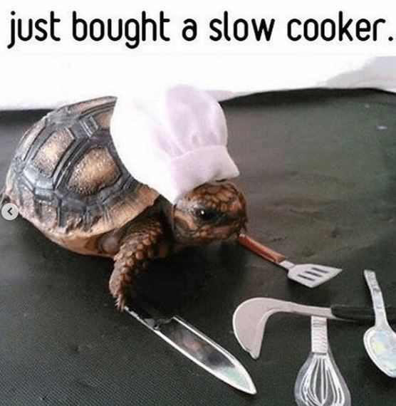 Tableware - just bought a slow cooker.