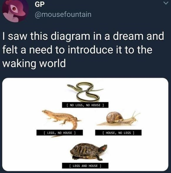 Vertebrate - GP @mousefountain I saw this diagram in a dream and felt a need to introduce it to the waking world ( NO LEGS, NO HOUSE ] [ LEGS, NO HOUSE ] [ HOUSE, NO LEGS ] [ LEGS AND HOUSE ]