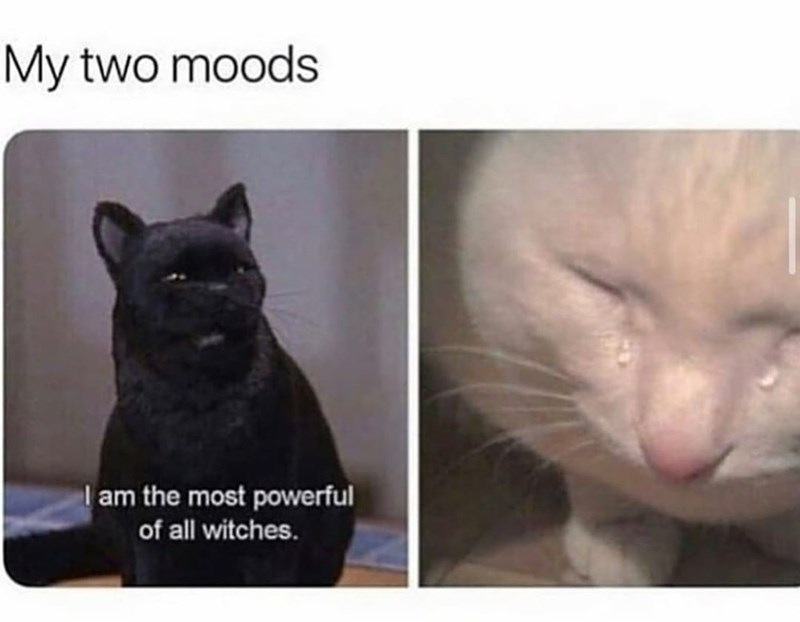 Cat - My two moods I am the most powerful of all witches.
