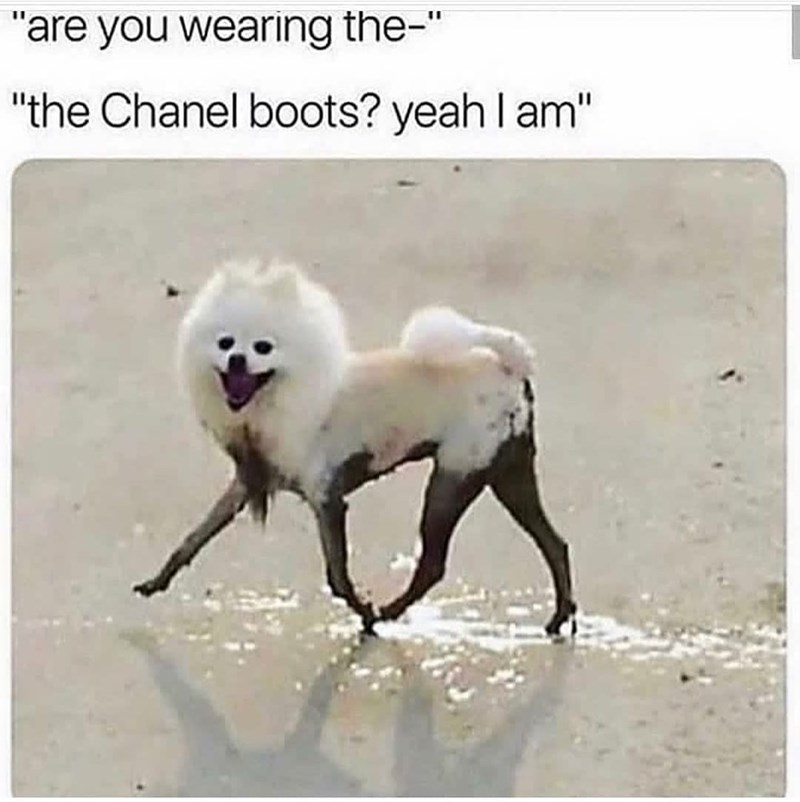 """Water - """"are you wearing the-"""" """"the Chanel boots? yeah l am"""""""