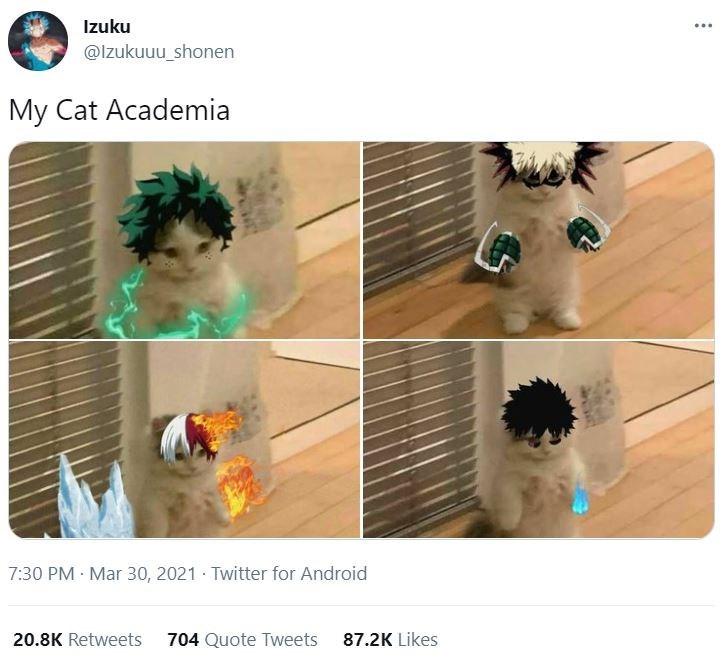 Hair - Izuku ... @Izukuuu_shonen My Cat Academia 7:30 PM Mar 30, 2021 Twitter for Android 20.8K Retweets 704 Quote Tweets 87.2K Likes
