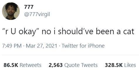 "Font - 777 @777virgil ""r U okay"" no i should've been a cat 7:49 PM Mar 27, 2021 · Twitter for iPhone 86.5K Retweets 2,563 Quote Tweets 328.5K Likes"