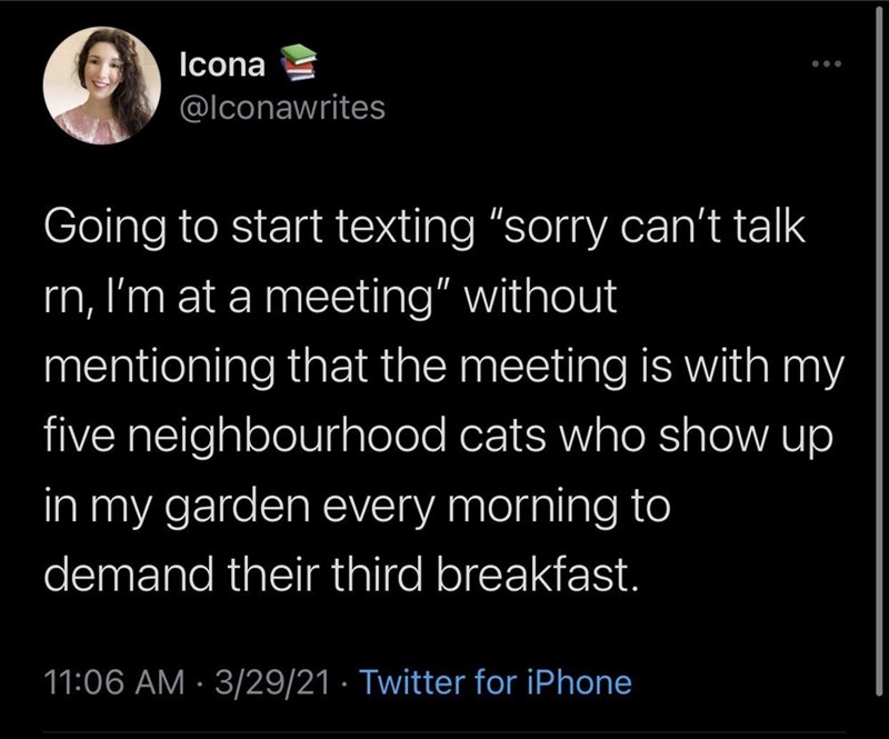 """Organism - Icona ... @lconawrites Going to start texting """"sorry can't talk rn, I'm at a meeting"""" without mentioning that the meeting is with my five neighbourhood cats who show up in my garden every morning to demand their third breakfast. 11:06 AM · 3/29/21 · Twitter for iPhone"""