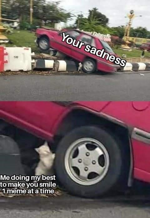 Wheel - Dekargle Your sadness CERE Me doing my best to make you smile 1 meme at a time
