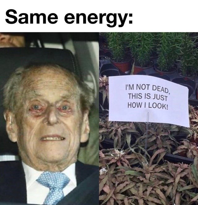 Funny meme about how Prince Philip looks like he is dead.