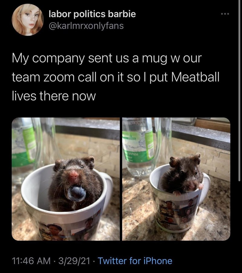 Food - labor politics barbie @karlmrxonlyfans My company sent us a mug w our team zoom call on it so I put Meatball lives there now EWhite 11:46 AM · 3/29/21 · Twitter for iPhone