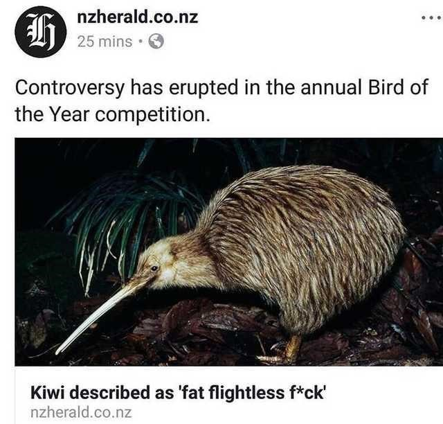 Nature - nzherald.co.nz 25 mins Controversy has erupted in the annual Bird of the Year competition. Kiwi described as 'fat flightless f*ck' nzherald.co.nz