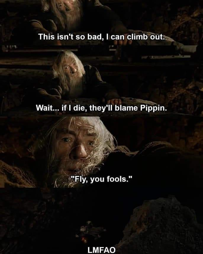 """Font - This isn't so bad, I can climb out. Wait... if I die, they'll blame Pippin. CFly, you fools."""" LMFAO"""