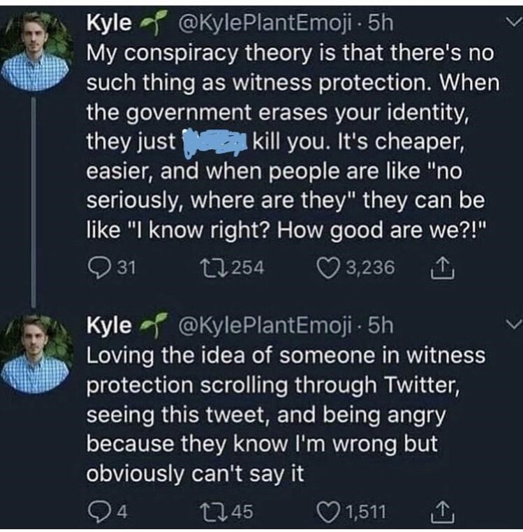"""Organism - @KylePlantEmoji - 5h Kyle My conspiracy theory is that there's no such thing as witness protection. When the government erases your identity, they just kill you. It's cheaper, easier, and when people are like """"no seriously, where are they"""" they can be like """"I know right? How good are we?!"""" Q 31 27 254 O 3,236 Kyle @KylePlantEmoji - 5h Loving the idea of someone in witness protection scrolling through Twitter, seeing this tweet, and being angry because they know l'm wrong but obviously"""