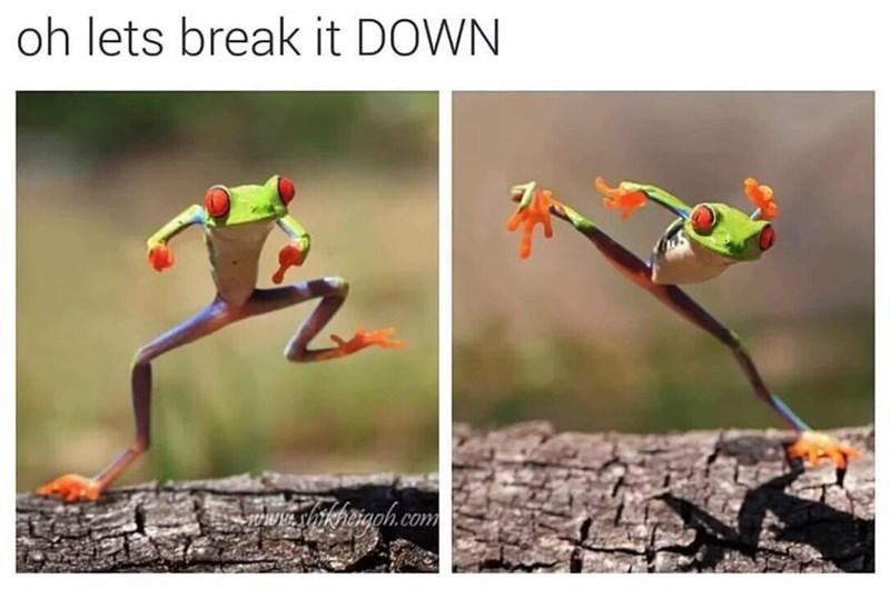 Nature - oh lets break it DOWN shikhaiaph.com