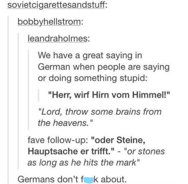 """Font - sovietcigarettesandstuff: bobbyhellstrom: leandraholmes: We have a great saying in German when people are saying or doing something stupid: """"Herr, wirf Hirn vom Himmel!"""" """"Lord, throw some brains from the heavens."""" fave follow-up: """"oder Steine, Hauptsache er trifft."""" - """"or stones as long as he hits the mark"""" Germans don't f k about."""