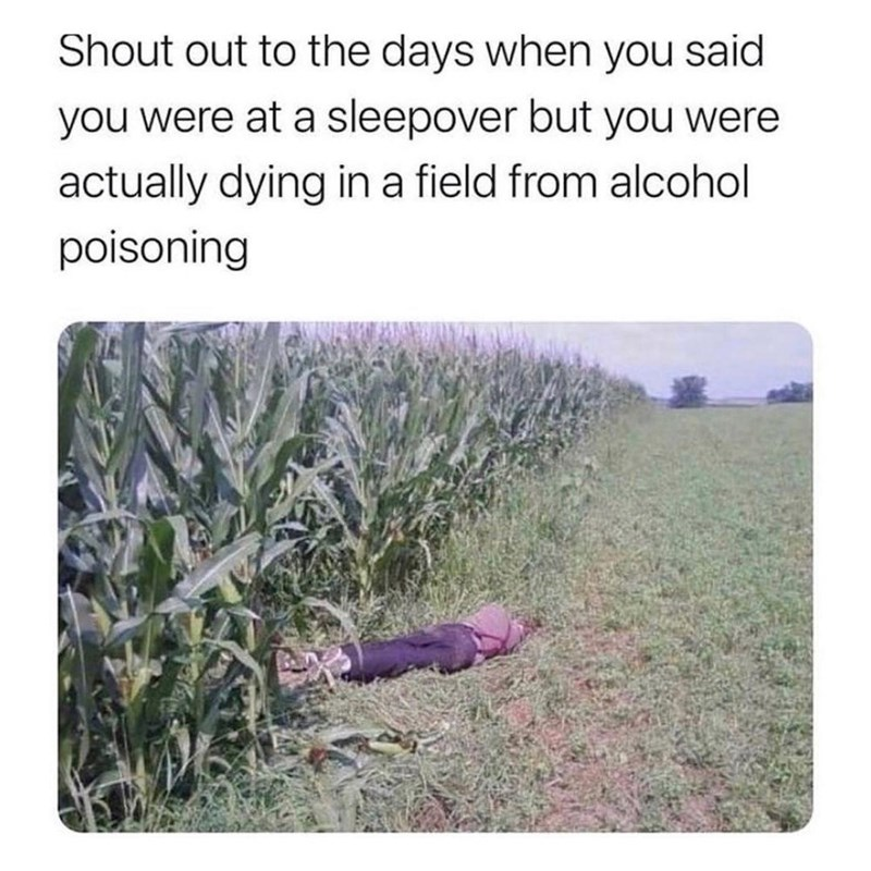 Plant - Shout out to the days when you said you were at a sleepover but you were actually dying in a field from alcohol poisoning
