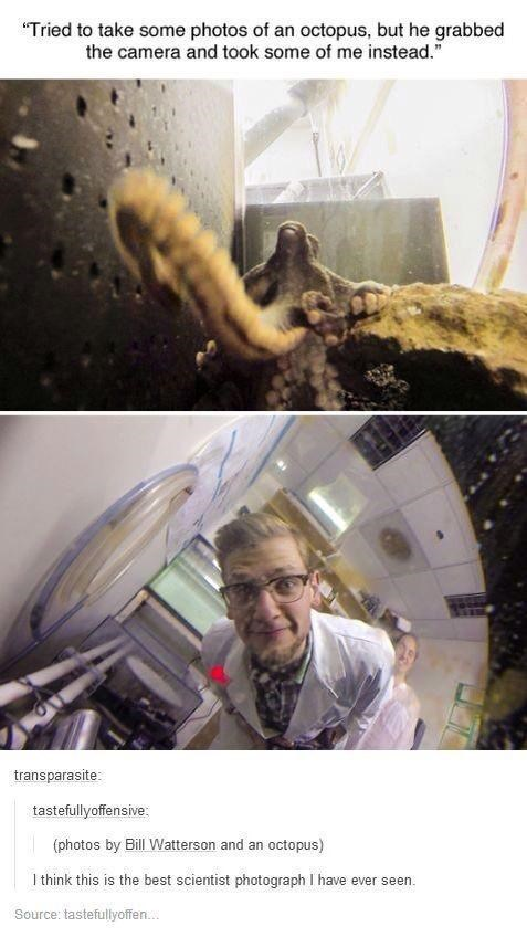 """Jaw - """"Tried to take some photos of an octopus, but he grabbed the camera and took some of me instead."""" transparasite: tastefullyoffensive: (photos by Bill Watterson and an octopus) I think this is the best scientist photograph I have ever seen. Source: tastefullyoffen."""