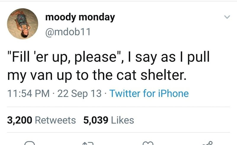 """Font - moody monday @mdob11 """"Fill 'er up, please"""", I say as I pull my van up to the cat shelter. 11:54 PM · 22 Sep 13 · Twitter for iPhone 3,200 Retweets 5,039 Likes"""