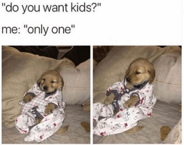 """Dog - """"do you want kids?"""" me: """"only one"""""""
