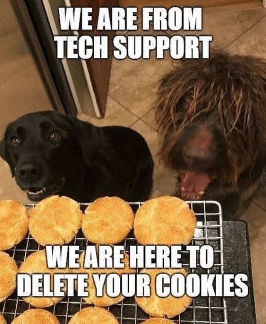Dog - WE ARE FROM TECH SUPPORT WE ARE HERE TO DELETE YOUR COOKIES