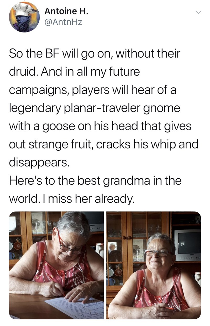 Facial expression - Antoine H. @AntnHz So the BF will go on, without their druid. And in all my future campaigns, players will hear of a legendary planar-traveler gnome with a goose on his head that gives out strange fruit, cracks his whip and disappears. Here's to the best grandma in the world. I miss her already. 0O