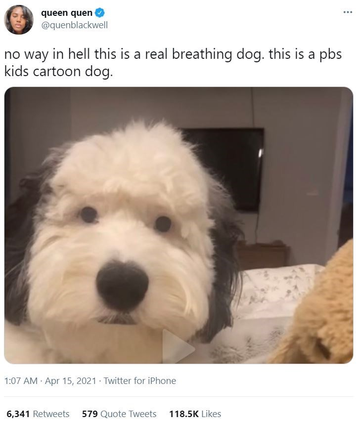 Dog - queen quen @quenblackwell ... no way in hell this is a real breathing dog. this is a pbs kids cartoon dog. 1:07 AM Apr 15, 2021 · Twitter for iPhone 6,341 Retweets 579 Quote Tweets 118.5K Likes