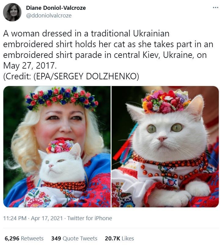 Cat - Diane Doniol-Valcroze ... @ddoniolvalcroze A woman dressed in a traditional Ukrainian embroidered shirt holds her cat as she takes part in an embroidered shirt parade in central Kiev, Ukraine, on May 27, 2017. (Credit: (EPA/SERGEY DOLZHENKO) 11:24 PM Apr 17, 2021 · Twitter for iPhone 6,296 Retweets 349 Quote Tweets 20.7K Likes