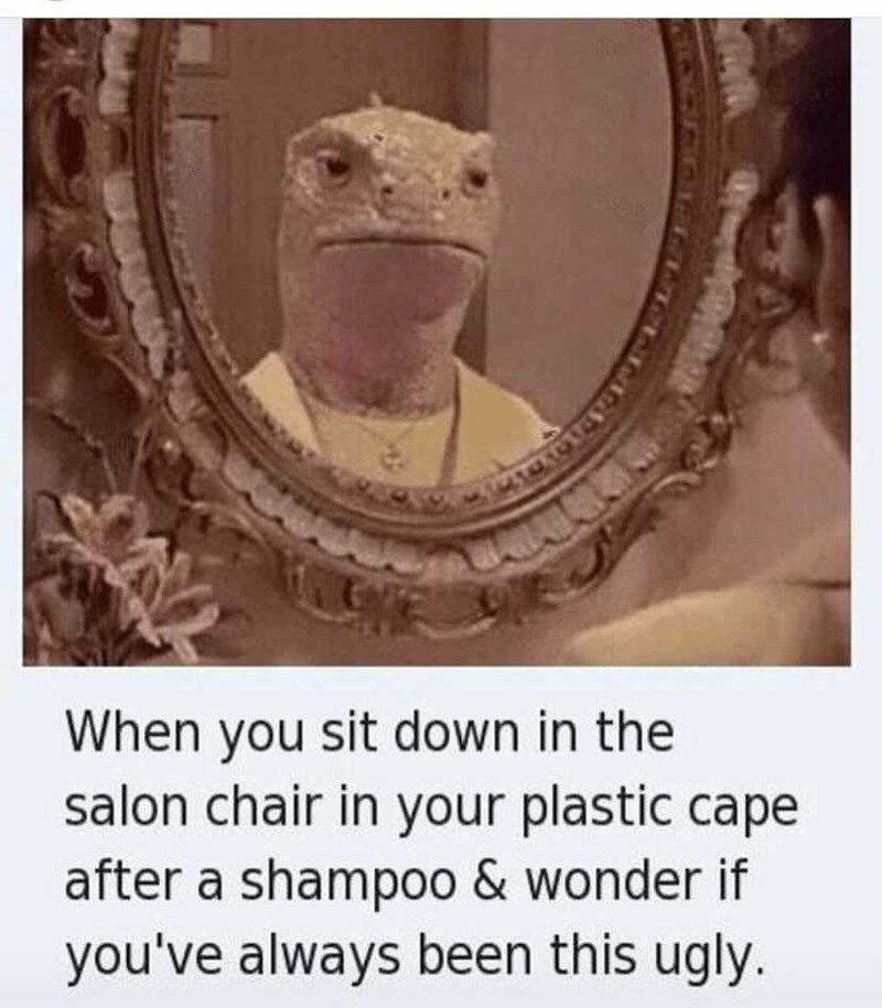 Head - When you sit down in the salon chair in your plastic cape after a shampoo & wonder if you've always been this ugly.