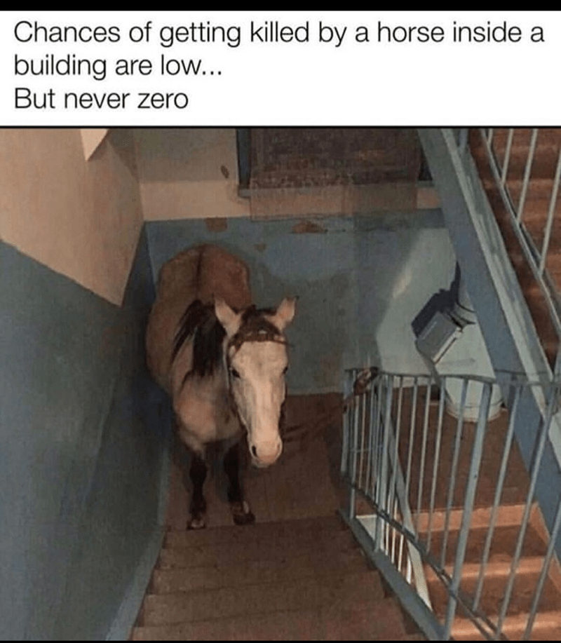 Working animal - Chances of getting killed by a horse inside a building are low... But never zero