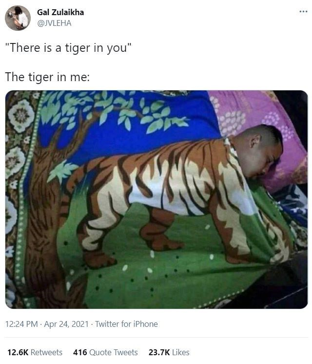"""Vertebrate - Gal Zulaikha ... @JVLEHA """"There is a tiger in you"""" The tiger in me: 12:24 PM · Apr 24, 2021 Twitter for iPhone 12.6K Retweets 416 Quote Tweets 23.7K Likes"""