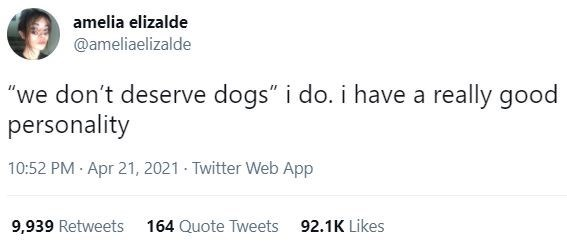 """Font - amelia elizalde @ameliaelizalde """"we don't deserve dogs"""" i do. i have a really good personality 10:52 PM · Apr 21, 2021 - Twitter Web App 9,939 Retweets 164 Quote Tweets 92.1K Likes"""