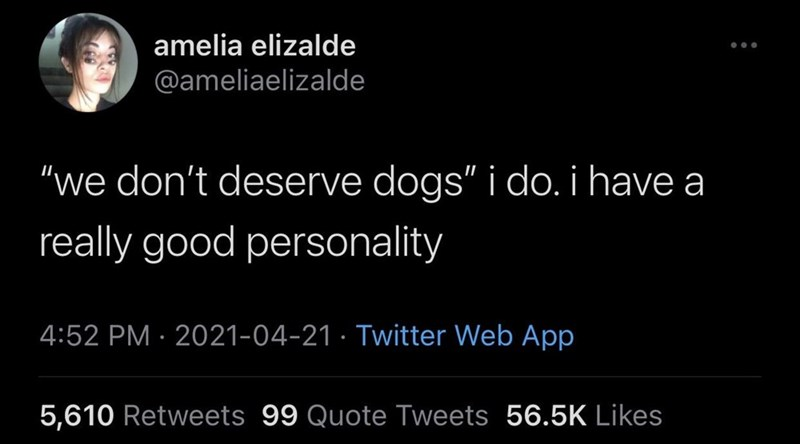 """Human - amelia elizalde @ameliaelizalde """"we don't deserve dogs"""" i do. i have a really good personality 4:52 PM · 2021-04-21 · Twitter Web App 5,610 Retweets 99 Quote Tweets 56.5K Likes"""