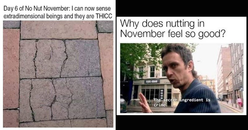 Funny dank memes about 'No-Nut November'
