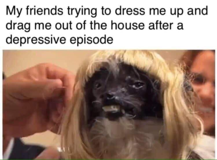 Dog - My friends trying to dress me up and drag me out of the house after a depressive episode