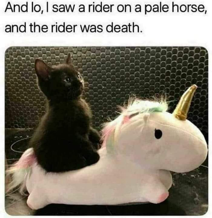 Photograph - And lo, I saw a rider on a pale horse, and the rider was death.